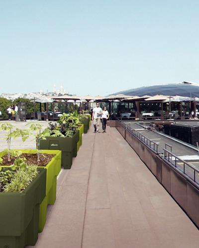 Jardins sur toits en ville